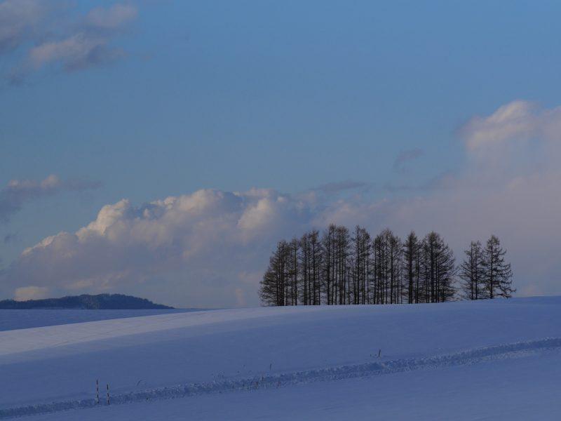 Biei Deep Hokkaido - Furano - Biei