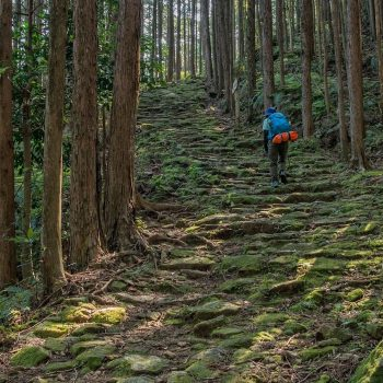 Kumano Ancient Trail – Small Group