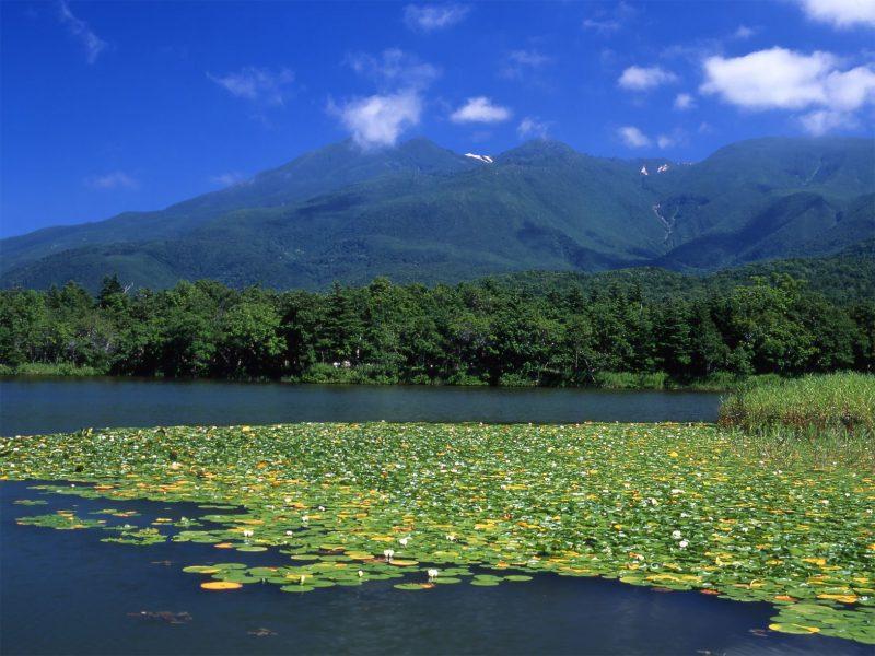 Shiretoko, Japan Tours, RediscoverTours.com