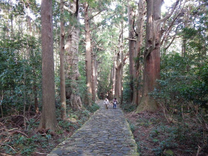 Takahara - Kumano, Japan Tours, RediscoverTours.com