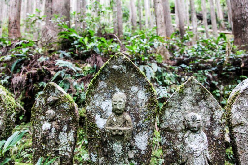 Takahara - Kumano 2, Japan Tours, RediscoverTours.com