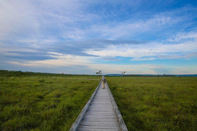 Marshlands of Hokkaido